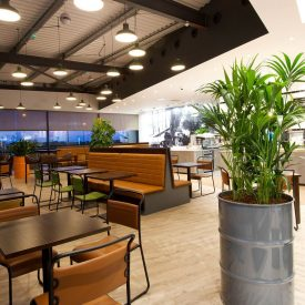 Restaurants and Breakout Areas