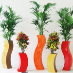 S C Planters with Kentia Palm and Codiaeum Plants