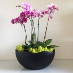 Matte Black Wave Bowl with Orchid