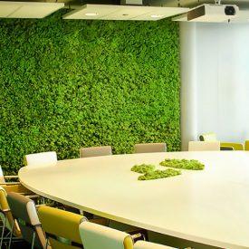 Living Walls / Moss Walls