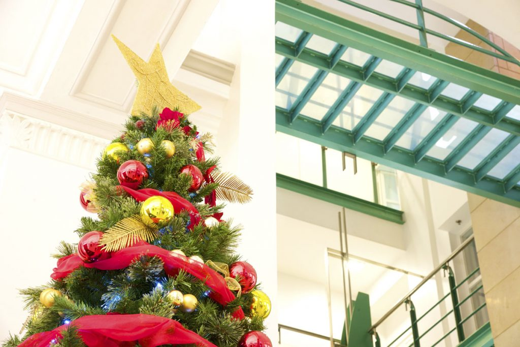 15 Ft Christmas Tree.Christmas Tree Gallery The Green Office