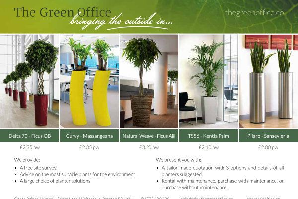 The Green Office Rental Flyer